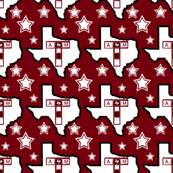 Texas  A&M University Team Colors
