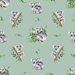 Aussie Koalas Dusty Mint