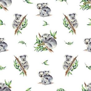 Aussie Koalas White