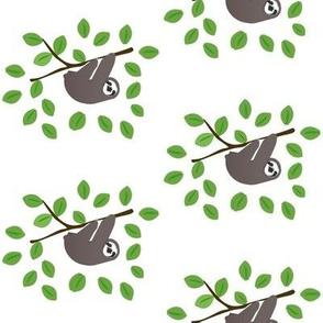 Sloths in Trees