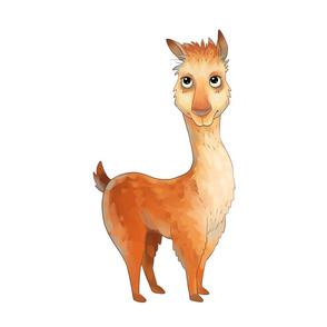 "18"" Llama Design"