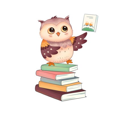Rdisplate_owl_reading_shop_preview