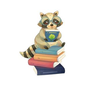 "18"" Reading Raccoon Design"