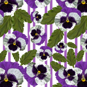Purple pansy delight
