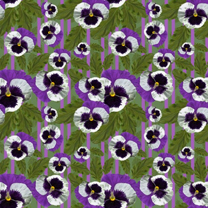 Prancing Purple pansies