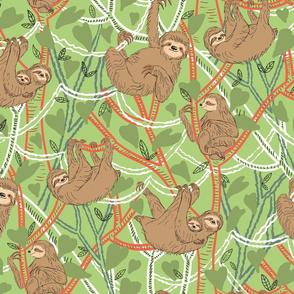 Brown Sloths 2