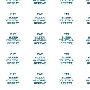 Eat Sleep Volleyball Repeat Mermaid Ocean Blue Glitter Color Text