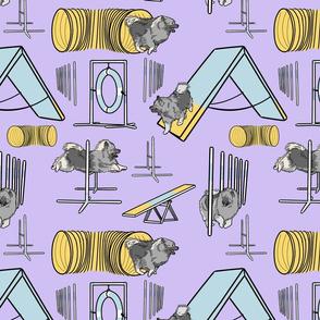 Simple Keeshond agility dogs - purple