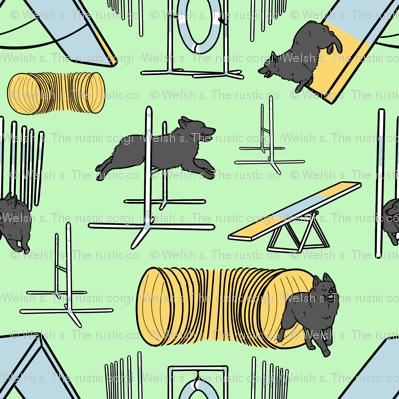 Simple Schipperke agility dogs - green