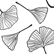 Rgingko-leaves-black-and-white_shop_thumb