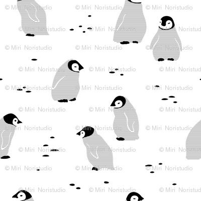 Black and white Penguins