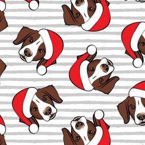 Christmas Brittanys (liver) - grey stripes