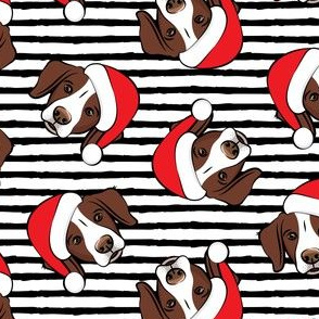 Christmas Brittanys (liver) - black stripes