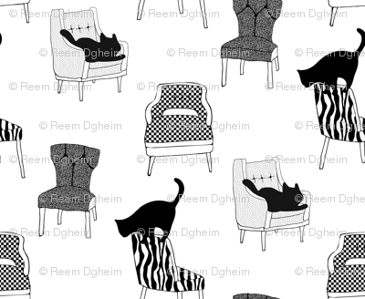 black cats on chairs