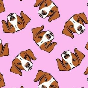 Brittanys (orange) - pink