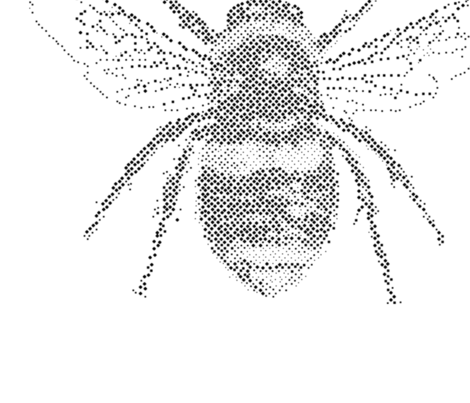 Dotwork Bee fabric by pearls_and_picots on Spoonflower - custom fabric