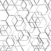 Rblack-and-white-01_shop_thumb