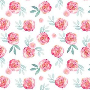 Ibd rose bush 5x5