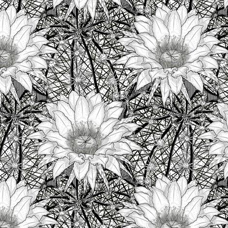 8ad12eb61c https   www.spoonflower.com giftwrap 6158275-heavenly-by-ktd 2019 ...