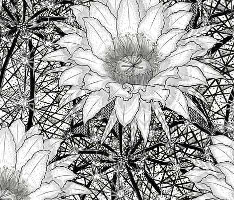 Black & White Geo Cactus Echinopsis fabric by helenpdesigns on Spoonflower - custom fabric