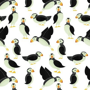 Puffins on White