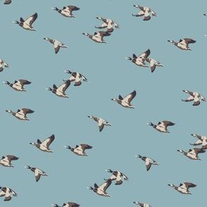 Flying ducks blue tiny