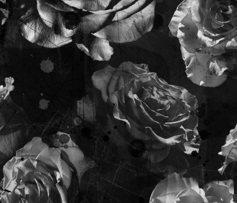 Rblack-and-white-large-scale-roses_shop_preview