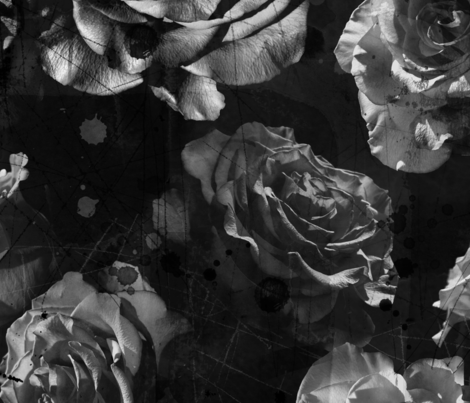 black and white large scale roses fabric by karismithdesigns on Spoonflower - custom fabric