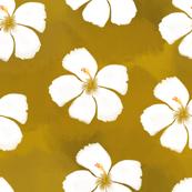 Mustard Hibiscus