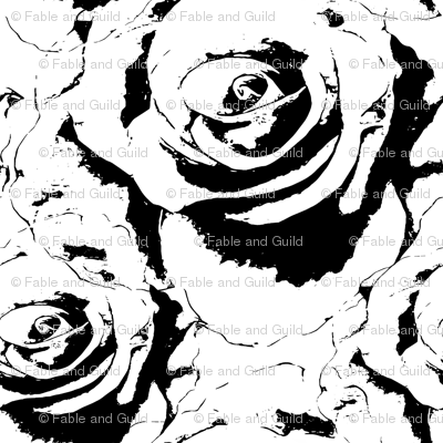 Large scale rose in black and white