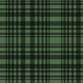 green and black plaid 2