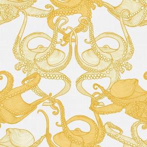 Cephalopod - Octopi smaller - Day Treasures