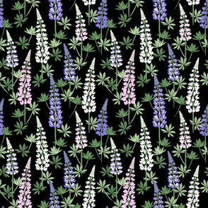 Lupine Fields black small