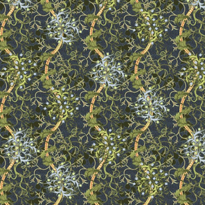 Seaweed Revisited Medium