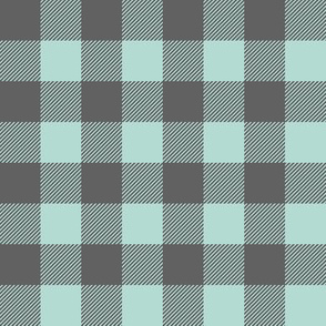dark mint and grey plaid - farm wholecloth coordinate C18BS