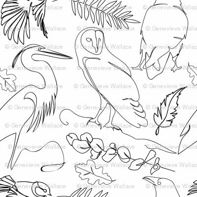 Ornithologists Delight
