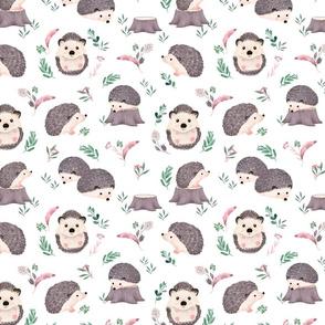 Watercolor Hedgehog - SMALL