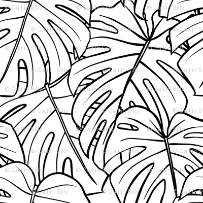 Monstera Leaves - Large
