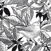 Rblack-and-white-original-ny_shop_thumb