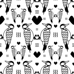 Black and White Woodpeckers