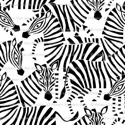 Jumbo Zebra Black and White