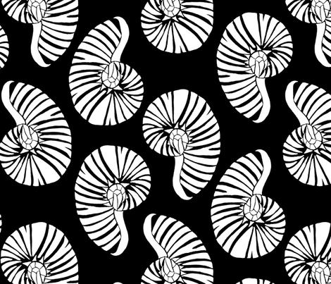 White Nautilus on Black  fabric by reneedavisdesign on Spoonflower - custom fabric