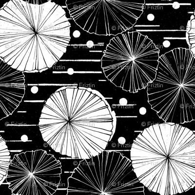 Water Garden M+M Black Hole by Friztin