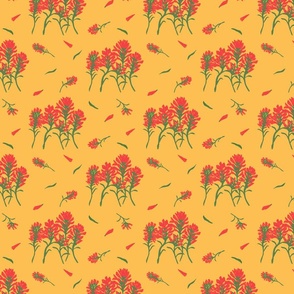 Floral-Indian Paintbrush-Golden Curry