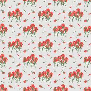 Floral-Indian Paintbrush-Light Gray