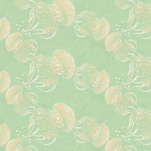 Austrilian jellies on wavelet bright