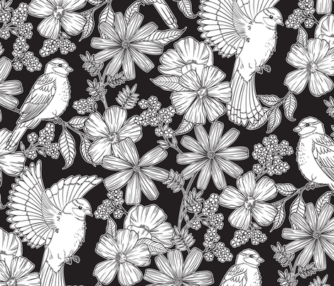 Bright Birds on Black fabric by fancyjackdesigns on Spoonflower - custom fabric