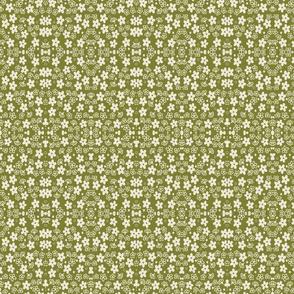 Green crazy daisy