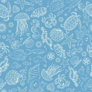 Beach Seaside Ocean Animals Crabs Lobsters Jellyfish Fish Turtles