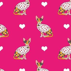 Valentine Calico Sphynx Pink